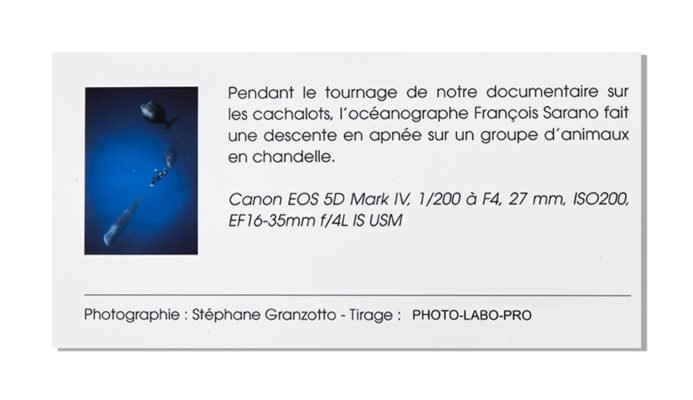 Legendes-exposition-photo-labo-pro